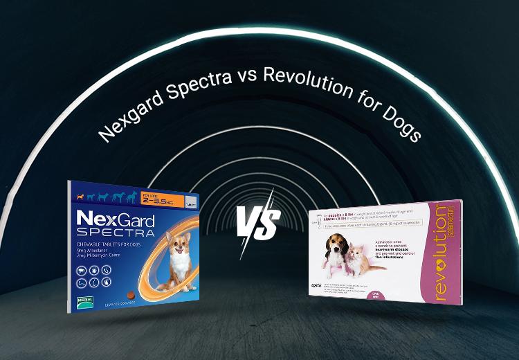 PCC-Nexgard-Revolution_09072021_212615.jpg