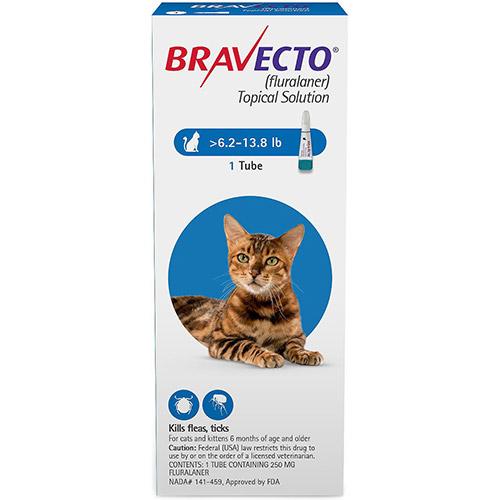 637181997236924397-Bravecto-Cat-Medium.jpg