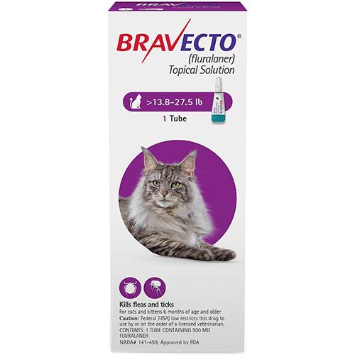 637181997370790734-Bravecto-Cat-Big.jpg