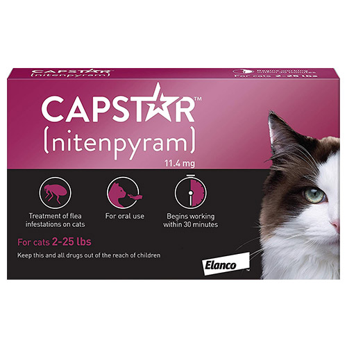 Capstar  for Cat Supplies