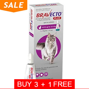 637291758013097072-Bravecto-plus-spot-on-for-large-cat-6.25-up-to-12.5kg-purple-of_08102021_042713.jpg