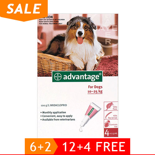 Advantage-Large-Dogs-21-55lbs-Red-of_12102020_225658.jpg