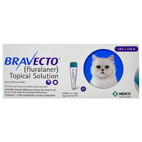 Bravecto-Cat-Medium.jpg