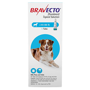 Bravecto-Topical-Solution-for-Dogs-44-88-lbs_12072020_040732.jpg