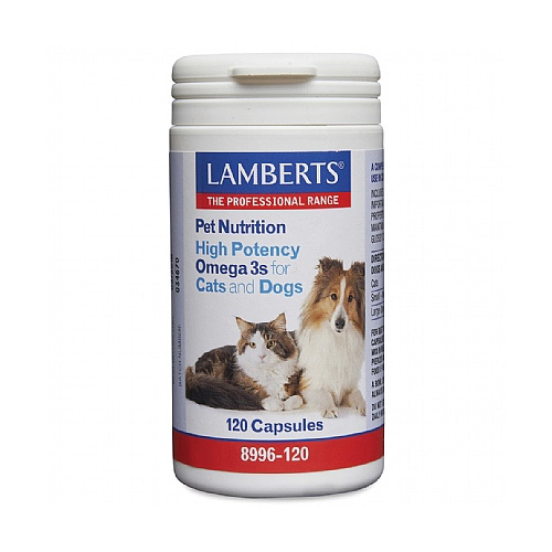 Lamberts High Potency Omega 3s for Dogs  for Supplements