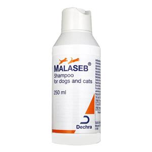 Malaseb-Shampoo-For-Cats.jpg