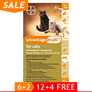 black-Friday-2019-deals/advantage-multi-advocate-kittens-and-small-cats-up-to-10lbs-orange-of.jpg