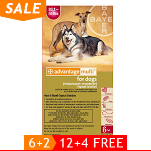 black-Friday-2019-deals/advantage-multi-advocate-large-dogs-20-1-55-lbs-red-of.jpg
