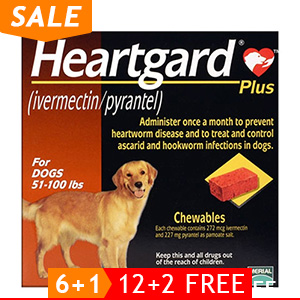 black-Friday-2019-deals/heartgard-plus-chewables-for-large-dog-51-100lbs-brown-of.jpg