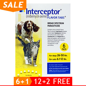 black-Friday-2019-deals/interceptor-for-dogs-26-50-lbs-yellow-of.jpg