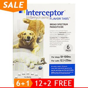 black-Friday-2019-deals/interceptor-for-dogs-51-100-lbs-white-of.jpg
