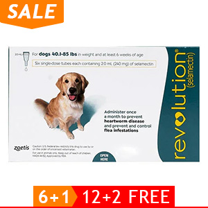 black-Friday-2019-deals/revolution-for-large-dogs-40-1-85lbs-green-of.jpg