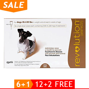 black-Friday-2019-deals/revolution-for-small-dogs-10-1-20lbs-brown-of.jpg
