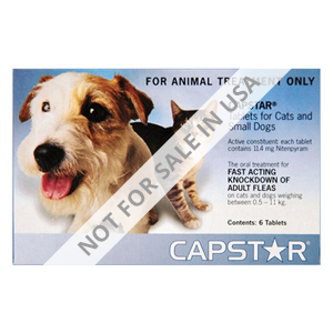 capstar-cat-and-small-dog-11mg-2-25-lbs-blue-wm.jpg