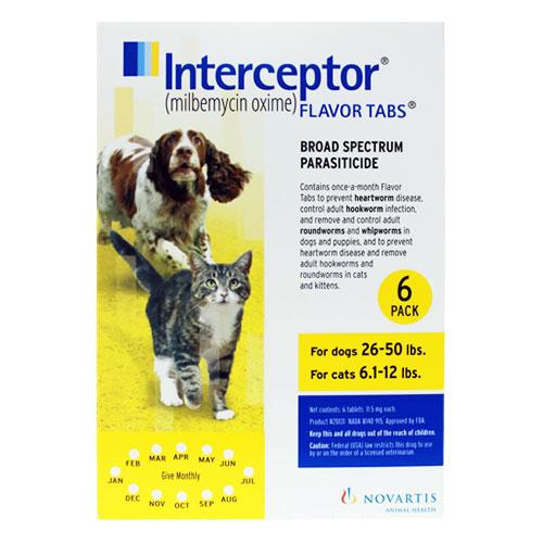 interceptor-for-dogs-26-50-lbs-yellow.jpg
