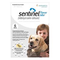 sentinel-for-dogs-51-100-lbs-white.jpg