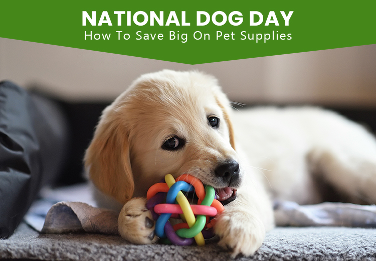 National Dog Day - How to Save Big On Pet Supplies