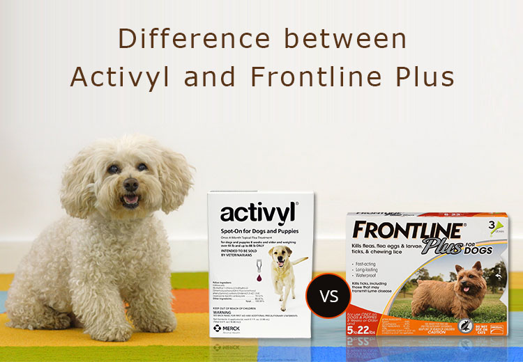 Difference between Activyl and Frontline Plus