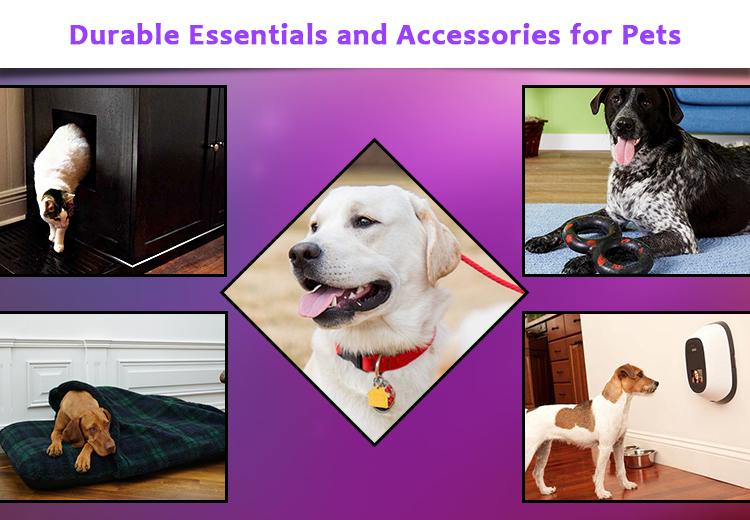 7 Must Have Durable Essentials and Accessories for Pets