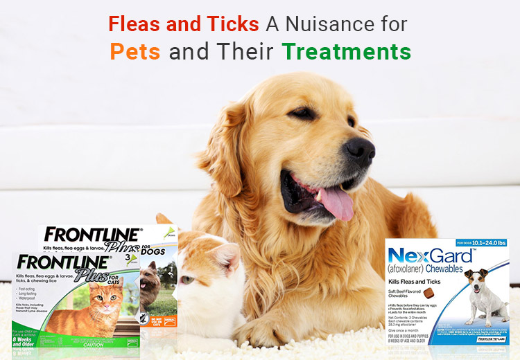 Fleas and Ticks – A Nuisance for Pets and Their Treatments