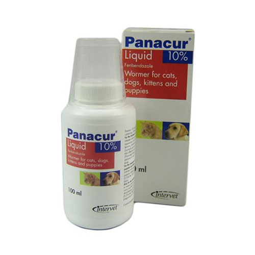 Panacur Oral Suspension for Dogs and Cats