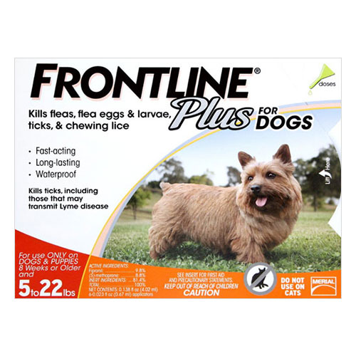 Frontline Plus Frontline Combo For Small Dog   Lbs Orange